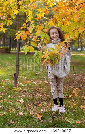 Beautiful little girl in white sweater posing in autumn Park near the tree the girl holds a tree branches in hands