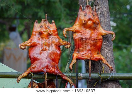 Barbecued Suckling Pig - a Chinese Cuisine