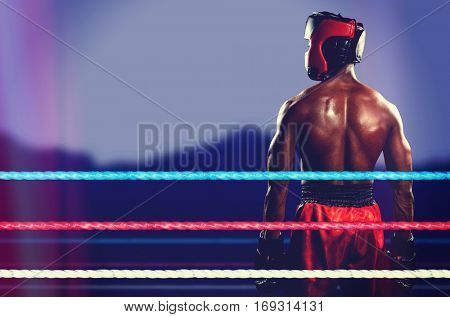 Rear view of boxer standing against blurred mountains