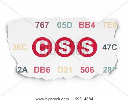 Database concept: Painted red text Css on Torn Paper background with  Hexadecimal Code