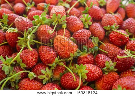 Strawberries. Background from fresh strawberries, Red strawberries. Strawberries at market. Strawberries fruits. Healthy strawberries.(selective focus)