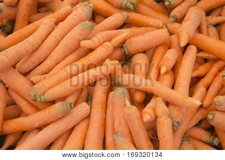 Organic carrots. Fresh organic carrots. Background texture of carrots. Healthy eating. Fall harvest, agricultural farming concept (selective focus)