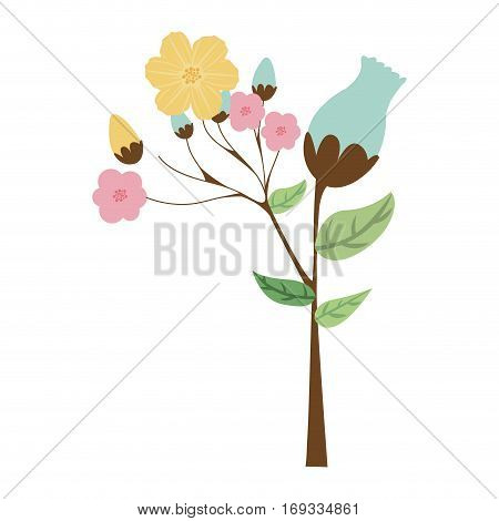 ramifications with flowers and leaves vector illustration