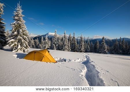 Yellow tent and snowshoes are standing at alpine meadow among the snow-covered firs on background colorful sky - magic winter adventure.