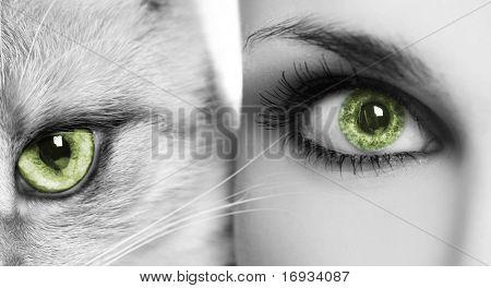 Frau und Katze mit grünen Augen