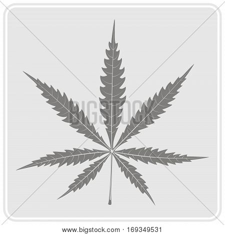 monochrome icon with cannabis leave for your design