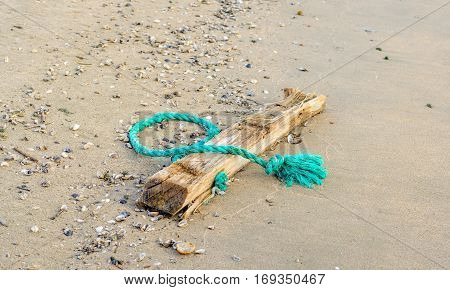 Closeup of frayed green braided synthetic rope fastened to driftwood and washed ashore on a sandy bank of a wide Dutch river. poster