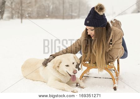 Beautiful young woman lying on a sleigh while her dog is lying next to the sleigh in the snow both enjoying a beautiful winter day in nature