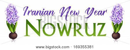 Nowruz greeting. Iranian new year. Vector banner. Hyacinth.
