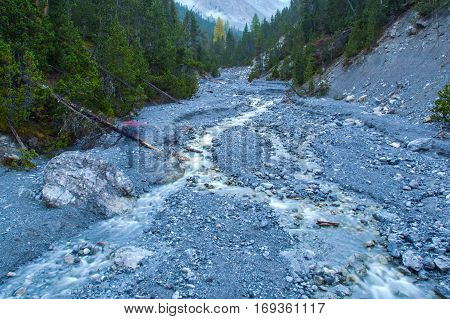 Natural wild mountain stream in the green forest