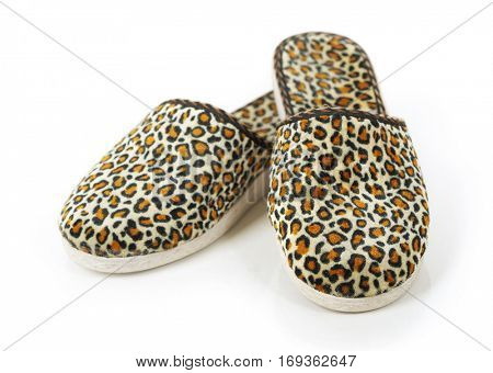 Slippers isolated on white background