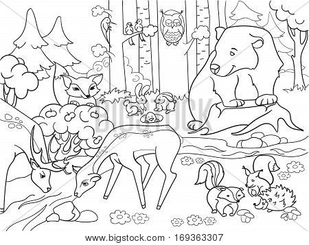 Forest Landscape with animals coloring book for adults vector illustration. Black and white lines Glade with a bear, deer, fox, hedgehog, rabbit, hare, weasel, squirrel, skunk, raccoon, birds, owl
