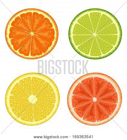 Citrus set isolated on white background lemon orange lime grapefruit