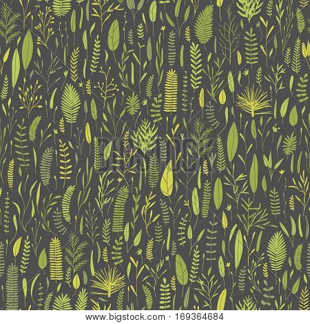 Vector seamless botanical pattern. Plant background. Branches, leaves, foliage doodles. Big collection of hand drawn elements.
