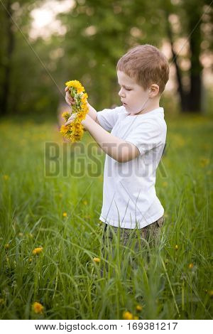 Cute little blond boy in a white t-shirt weaving a dandelions wreath in the park. Summer Outdoors. Summer symbol. Boy with flowers. Walks in the city garden.