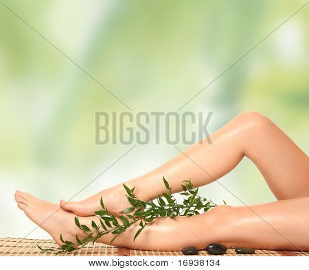 beautiful slim woman's legs isolated on white
