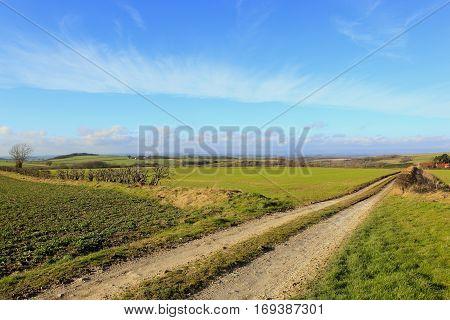 Beautiful Farming Landscape In Winter