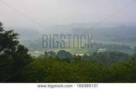 Kerala Landscape, Gods own country, foggy morning