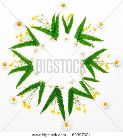 Wreath With Jasmine Chamomile Ranunculus And Leaves Of Green Fern