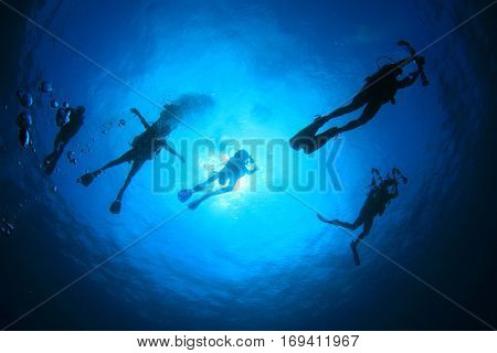 Scuba dive. Scuba divers swimming in ocean. Scuba diving underwater