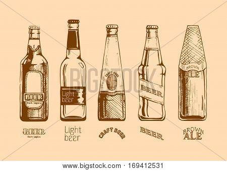 Vector set of beer bottles and inscriptions in ink hand drawn style. Dark lager light beer crafr beer and brown ale.