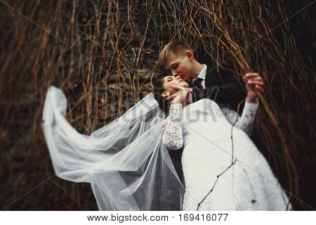 A View From Beneath On A Bride Standing In The Groom's Hugs While Her Veil Is Entagled In A Dry Ivy