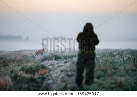 Hunter holding a rifle and aiming red deer prey in the mist hunter photoshooting at the morning.