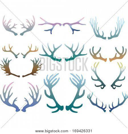 Set of deer antlers