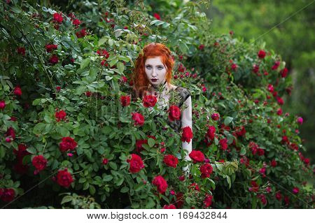 Gothic girl with red hair near the bushes of purple and red roses in the summer garden. Fashion photo outdoors. Gloomy mysterious woman with curly hair is surrounded by garden with flowers