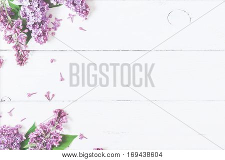 Spring flowers. Lilac flowers on white wooden background. Top view flat lay