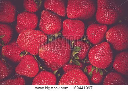 Fresh Organic Strawberries Closeup Photo. Tasteful Strawberry.