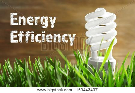 Light bulb on green grass. Text ENERGY EFFICIENCY on background