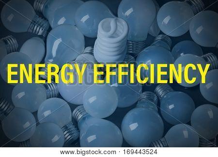 Text ENERGY EFFICIENCY on light bulbs background