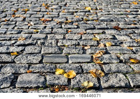 Grey pavement stone background. Autumn leaves on a pavement or walkway. Yellow leaves on the stone pavement. Autumn background.