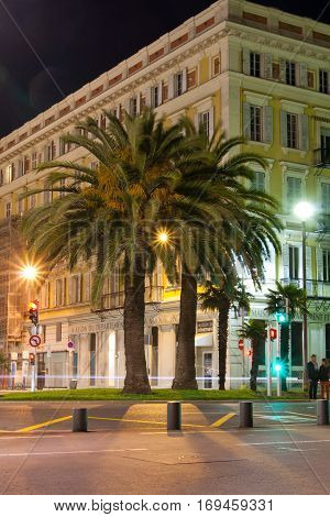 Night view Palm trees in Nice 2 may 2012 . Cote d'Azur. Mediterranean resort. France.