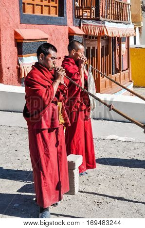 Monks During Morning Ceremony In Ladakh