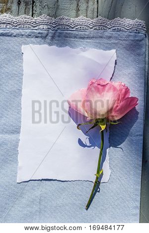 Beautiful pink roses on wooden rustic background with white paper and copy space