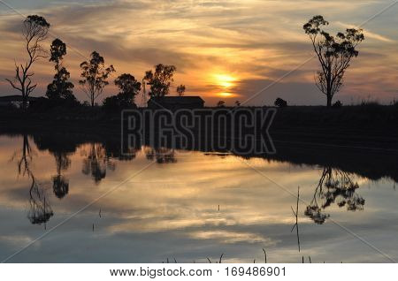 Pastoral sunset overlooking a small dam in rural Australia