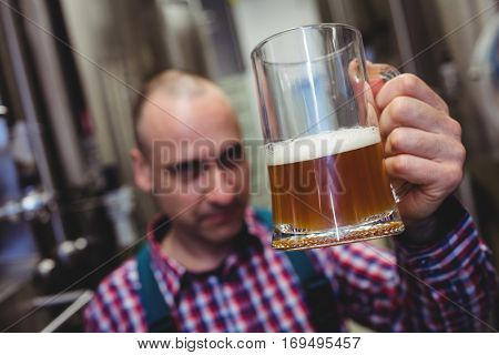 Worker examining beer in mug at brewery