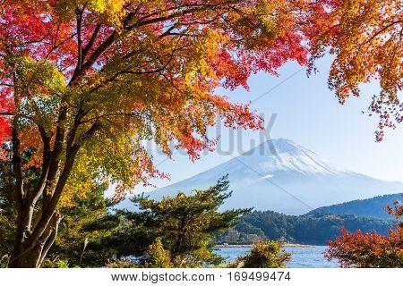 Fujisan in autumn
