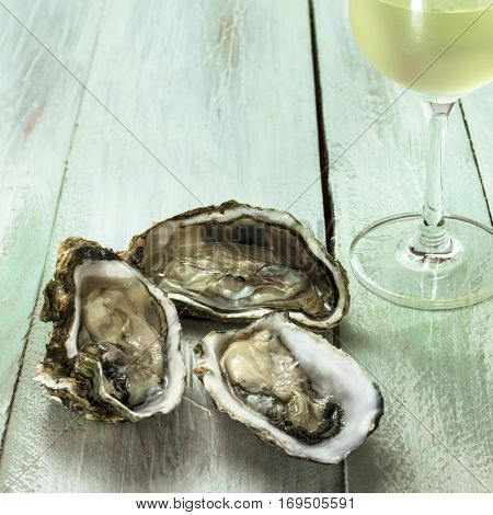 A square photo of freshly opened oysters with a fragment of a glass of white wine, on a wooden background texture with copy space