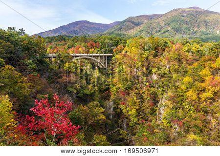Ofukazawa Bashi bridge crossing a canyon