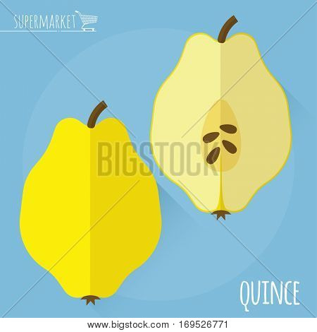 Flat design juicy fresh fruits icon vector template. Raw quince