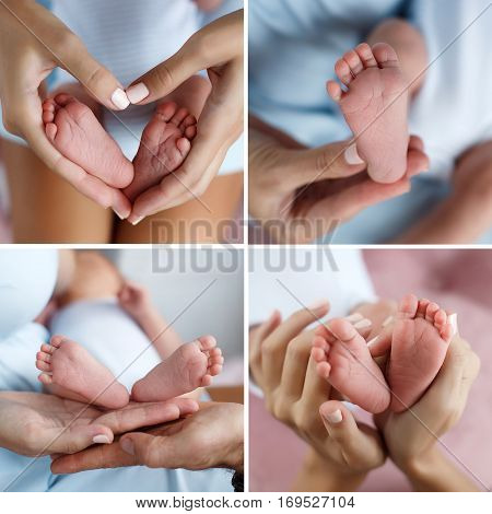 A collage of four photos,body parts,baby's feet and mother's hands in the shape of a heart,the baby's legs on the palms of dads and moms,bare feet of a newborn baby in the gentle hands of the mother