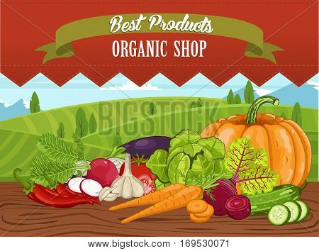 Organic shop banner with vegetable on wooden table vector illustration. Natural food, organic farming retail, vegan product store poster. Organic shop concept with tomato, pumpkin, garlic, eggplant