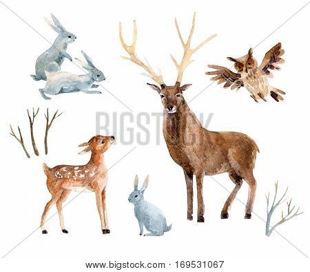 Watercolor deer with fawn rabbits birds isolated on white background. Wild forest animals set. Hand painted winter illustration