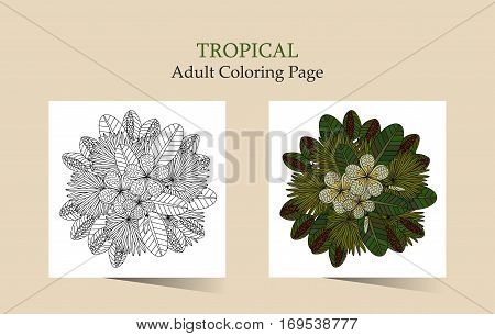 Tropic vector illustration. Adult antistress coloring page. Bouquet with tropical plants and mimosa flowers.