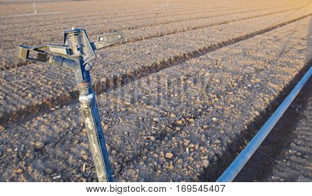 Closeup of a water sprinkler on recently seeded field