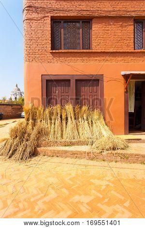 Nepal Bundled Straw After Harvest House V