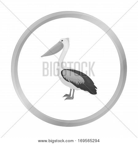 Pelican icon in monochrome style isolated on white background. Bird symbol vector illustration.